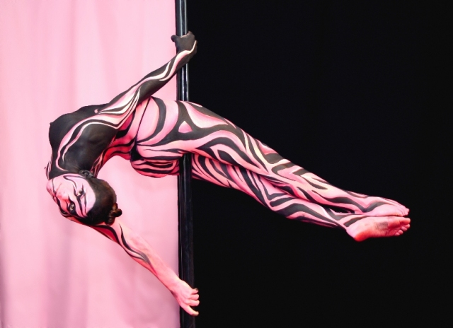 Assorted Work Body Painting Artist Riina Laine